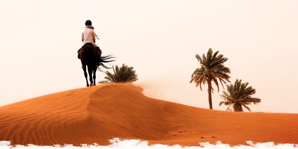Morocco: Horses,  Dunes and Nomads