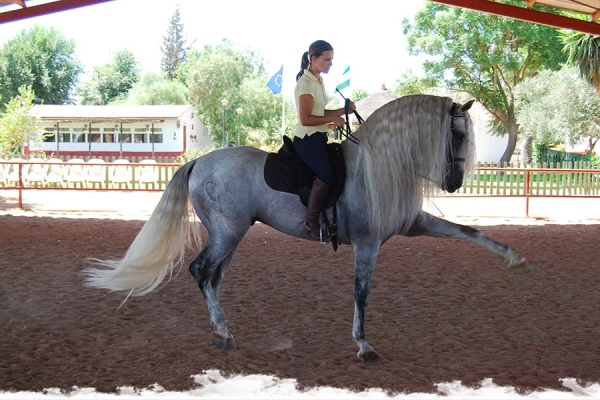 A week at Epona Equestrian Centre