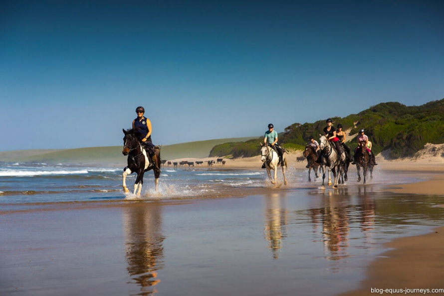 Wild Coast riding holidays and trail rides in South Africa