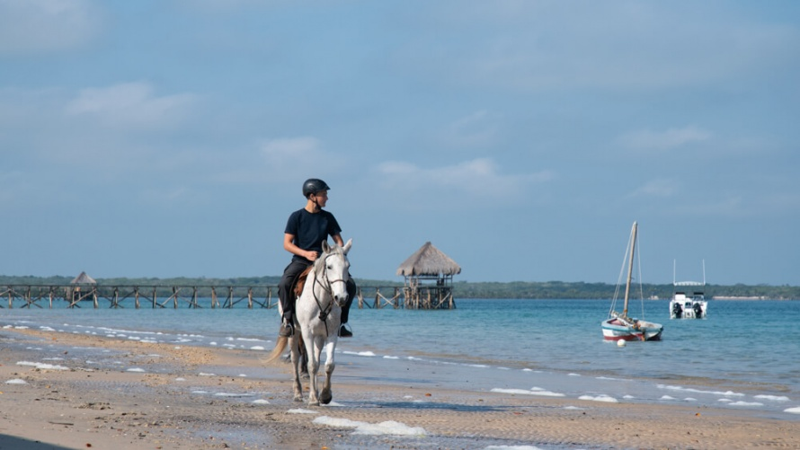 Horseback riding in the shores of Mozambique @WorldwideHoofprints