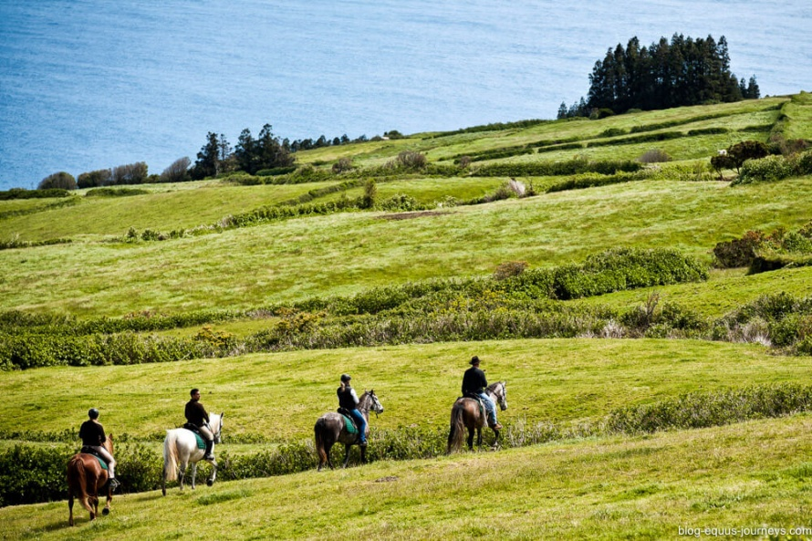 4-5 hours in the saddle every day to explore all the corners of the island @BlogEquusJourneys