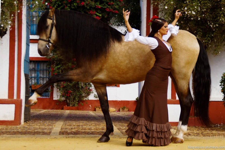 Horses and flamenco are match made in Spain @BlogEquusJourneys