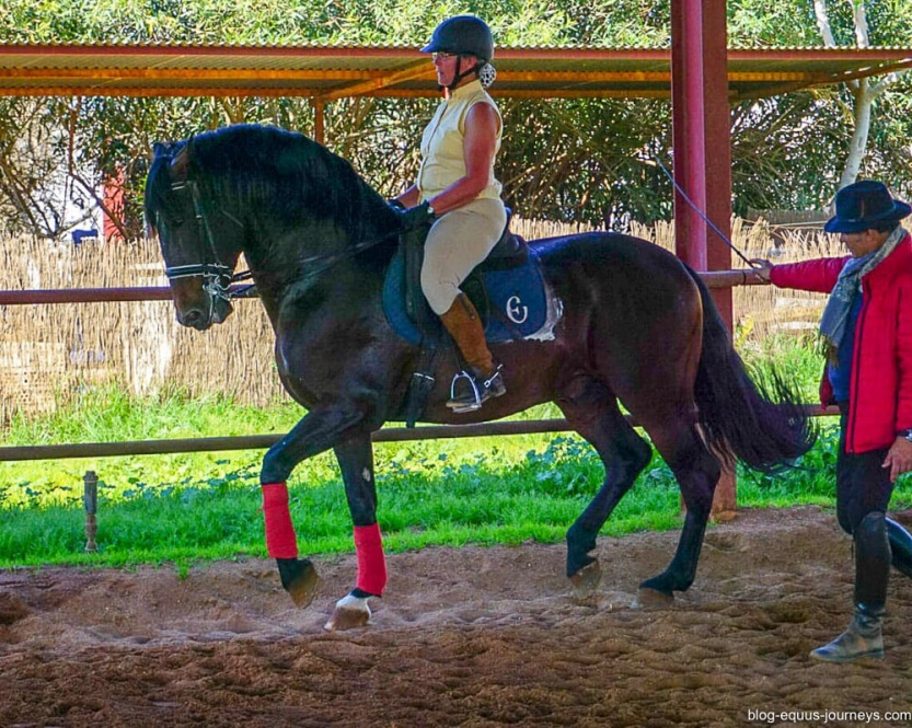 Dressage lessons from Rafael Soto @BlogEquusJourneys