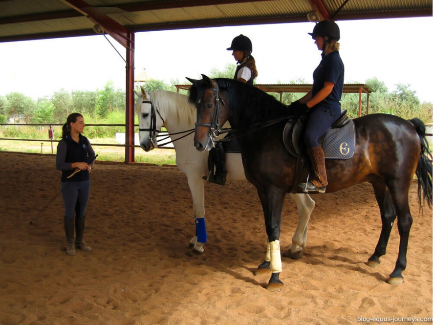 Dressage training with experience trainers @BlogEquusJourneys