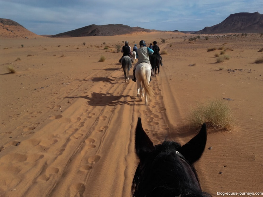Riding across the Sahara desert @WorldwideHoofprints