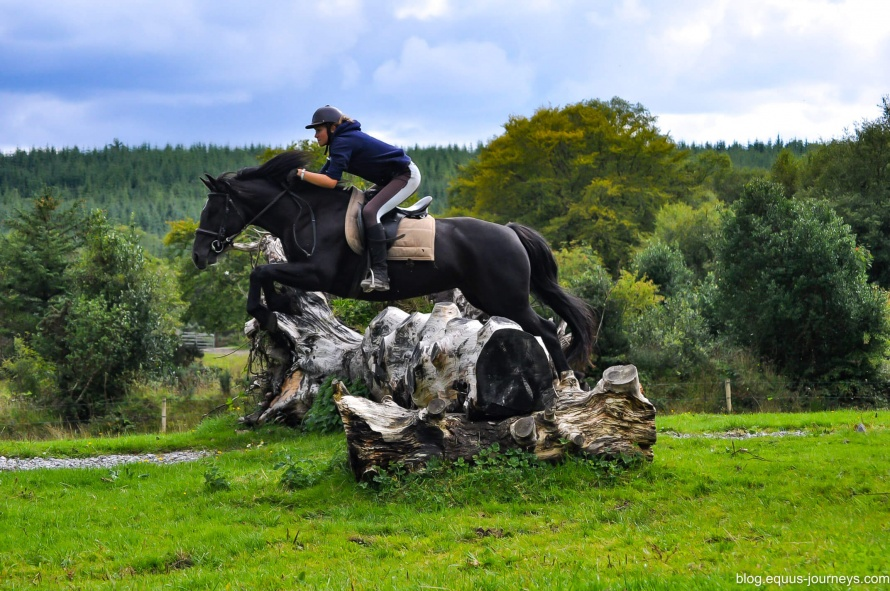Cross-country jumping at Slieve Aughty, Co. Galway