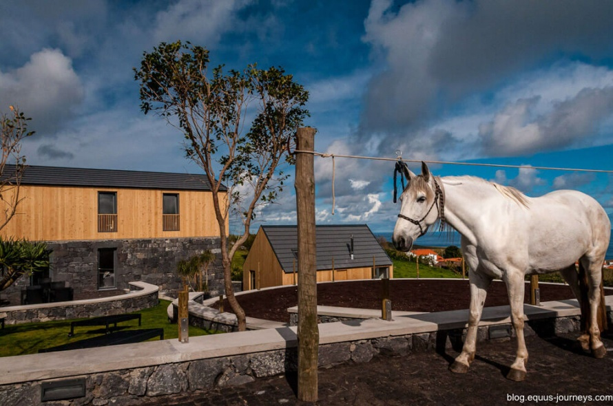 Patio Lodge in the Azores is an eco-tourism lodge and a great place to stay